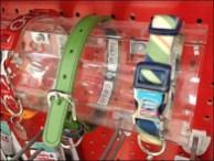 Pet Collar Pegboard Hump Display