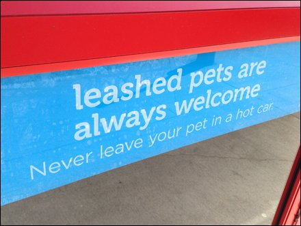 Pets Welcome In Store Main