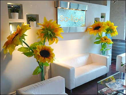 Entry Foyer Flower Show Overall