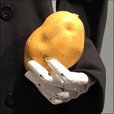 Potato Propping 2