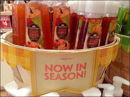 Scarlet Pumpkin Now In Season Main