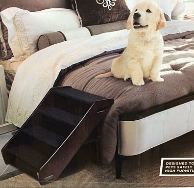 Animal Planet® Pet Stair Main