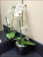 Restroom Floral Flourish in Retail