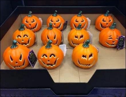 Cut Pumpkin 11 Up A