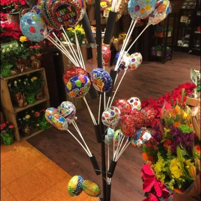 Balloon Tree Sales in Floral