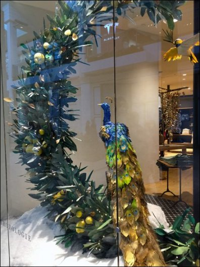 Peacock Window Dressing Main 1
