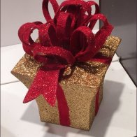 Littman's Sparkle Gift Box and Bow