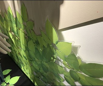 Vinyl Green Vines and Leaves 3