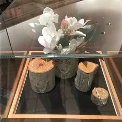 Museum Case Logs 1