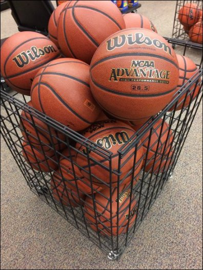 Wison Square Basketball Bulk Bin