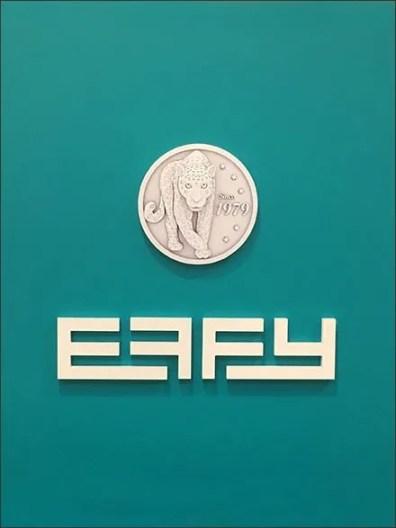 Effy Logo on Green 2