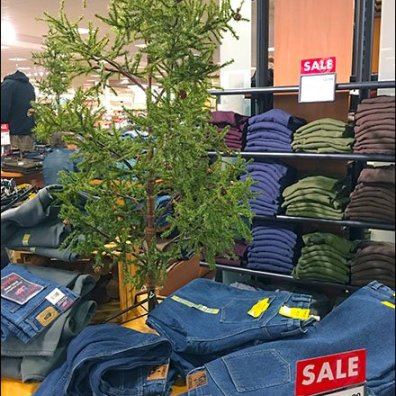 Charlie Brown Christmas Tree in Retail