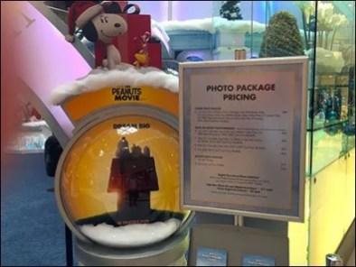 Mall Christmas Ice Palace 3