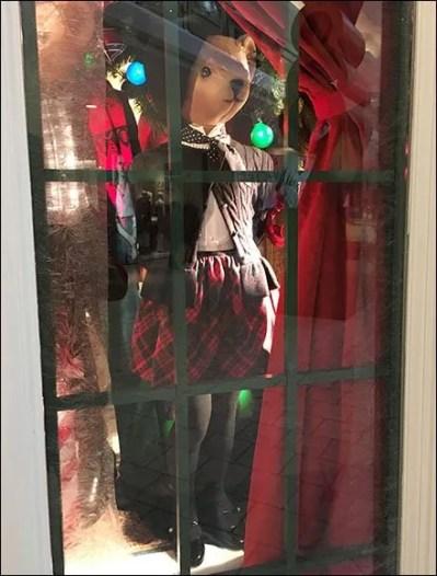 Well Dressed Teddy Bear Window 1