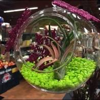 Free-Floating Plant Globes 5