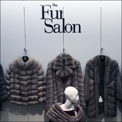 Fur Salon Departmental Branding 2