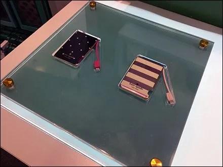Kate Spade Flat Museum Case 1