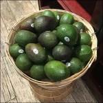 Gourmanoff Produce Bentwood Baskets Closeup