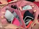 Victoria's Secret Canvas Bra Tote In-Store