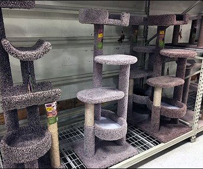 Cat Condo Pallet Rack Merchandising
