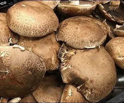 Produce - Merchandising Mushrooms By Texture 1