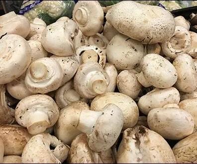Produce - Merchandising Mushrooms By Texture 2