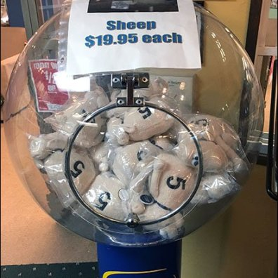 Serta Sheep Sale Gumball Machine 2