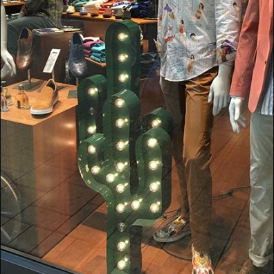 Robert Graham Window Cactus 2