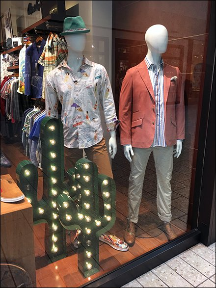 Robert Graham Window Cactus Main