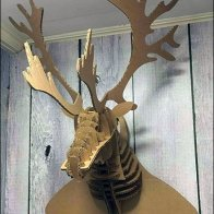 Corrugated Moose 0