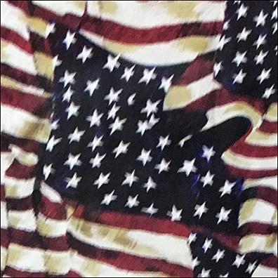 Patriotic Hip Flask 3
