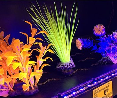 Fish Tank Accessory LED Lighting 3