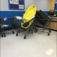 Kayak Shopping Cart 1