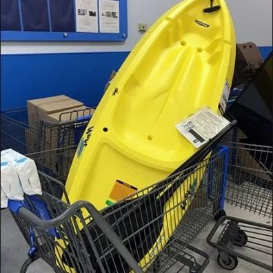 Kayak Shopping Cart 3