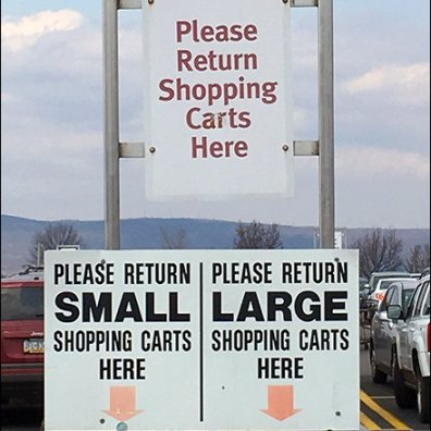 Wegmans Shopping Carts Segregated 3