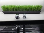 Mercedes Benz Manhattan Restroom Grass Landscaping Main