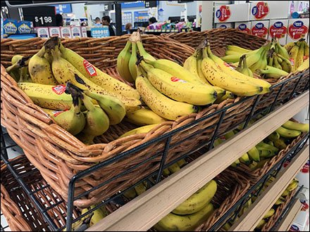 bananas-merchandised-en-masse-via-wicker-basket-main