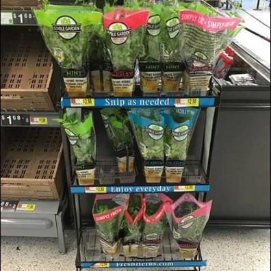 fresh-grow-herb-snip-it-rack-4