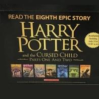 Half-Size Harry Potter Pallet Display