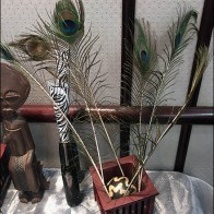 littmans-jewelers-diamond-party-peacock-feather-display-2