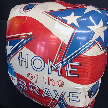 political-balloons-home-of-the-free