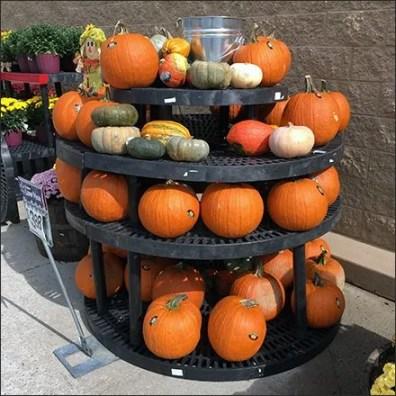 pumpkin-do-it-yourself-dunnage-lazy-suzan-main