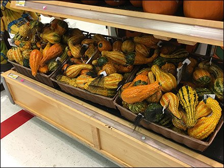 Mesh Bag Merchandising for Miniature Gourds