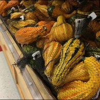Gourd Sales