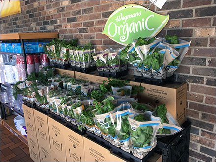 live-organic-herb-and-spice-display-2