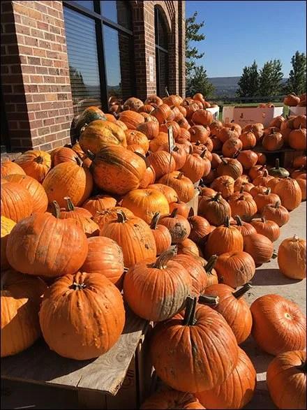 Pumpkin Cascade Seasonal Merchandising