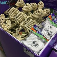 skeletons-sold-by-bulk-bin-full-2