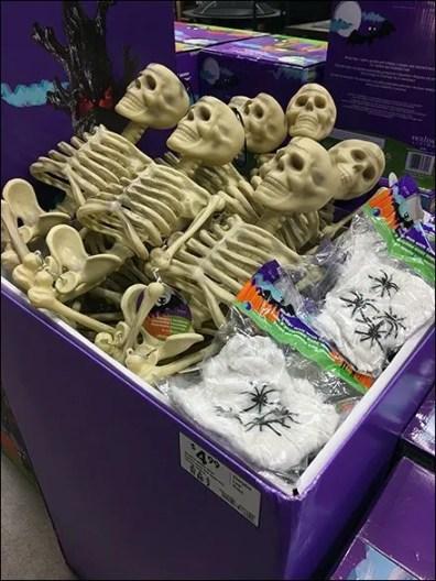 skeletons-sold-by-bulk-bin-full-2