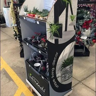 Magnetic Air Plants Display