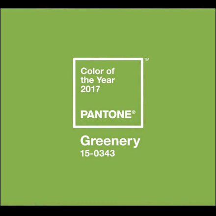 Greenery: Pantone Color Of The Year 2017